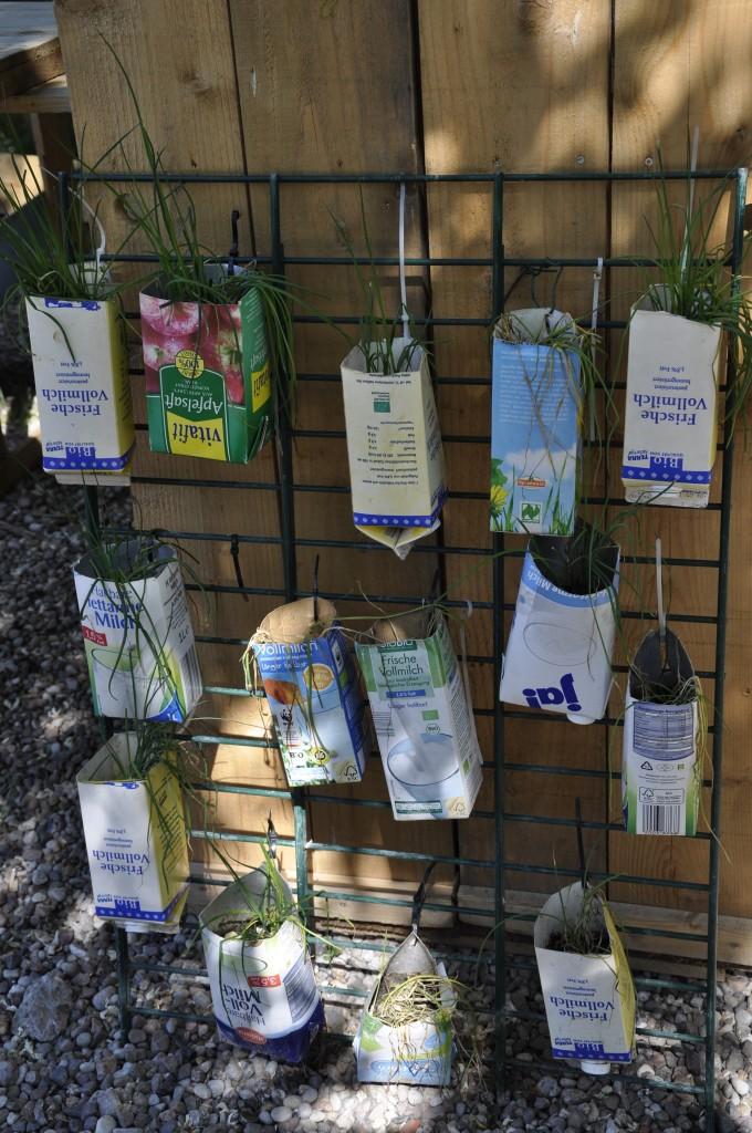 Urbangardening Milchtüten Pflanzen Upcycling Urbanjunglebloggers