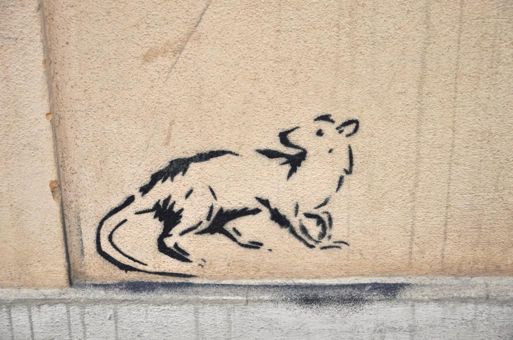 Dresden Street Art Ratte