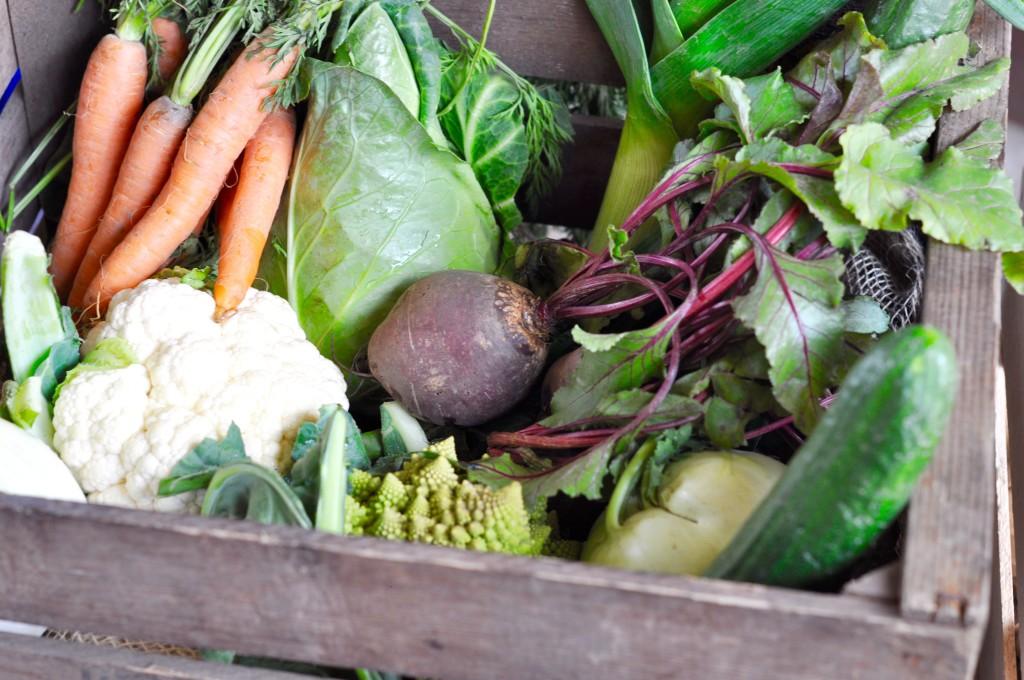 Frischepost Hamburg Schanze Gemüse Nachbarschaftsmarkt Hallo Frau Nachbar