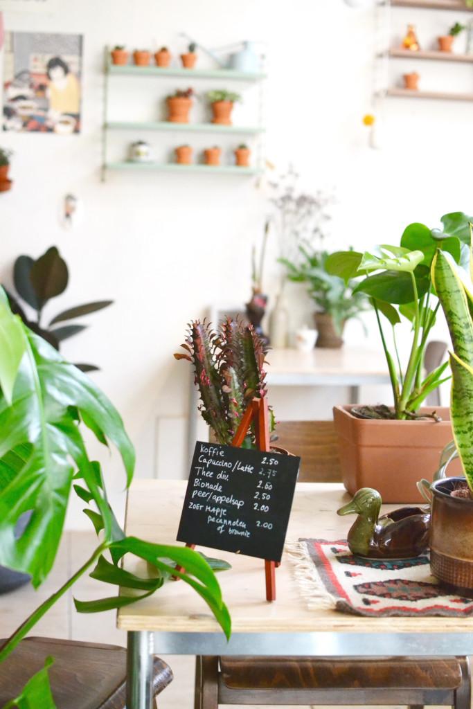 Wildernis Amsterdam West plants grüner Laden Hotspot coffee
