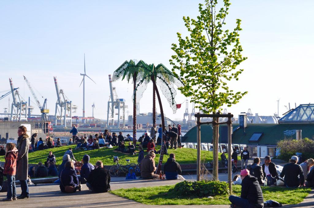 Hamburg Park Ficition Palme Blauer Himmel Grüne Oase Hamburger Hamburger Hafen