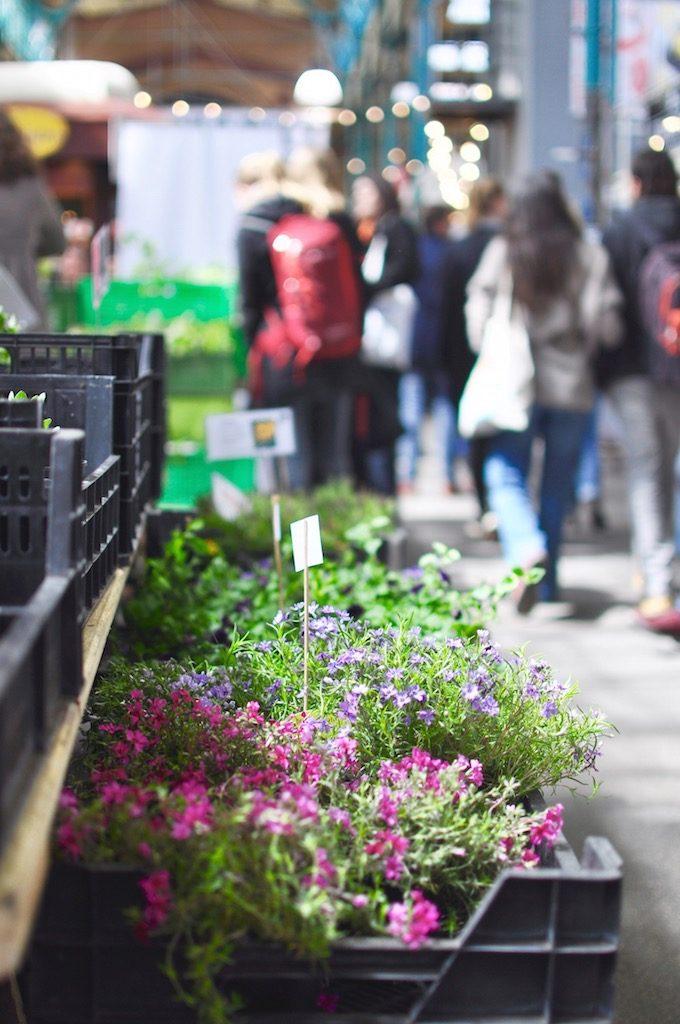 Berlin Markthalle neun 9 Kreuzberg Markt Blumen Fokus