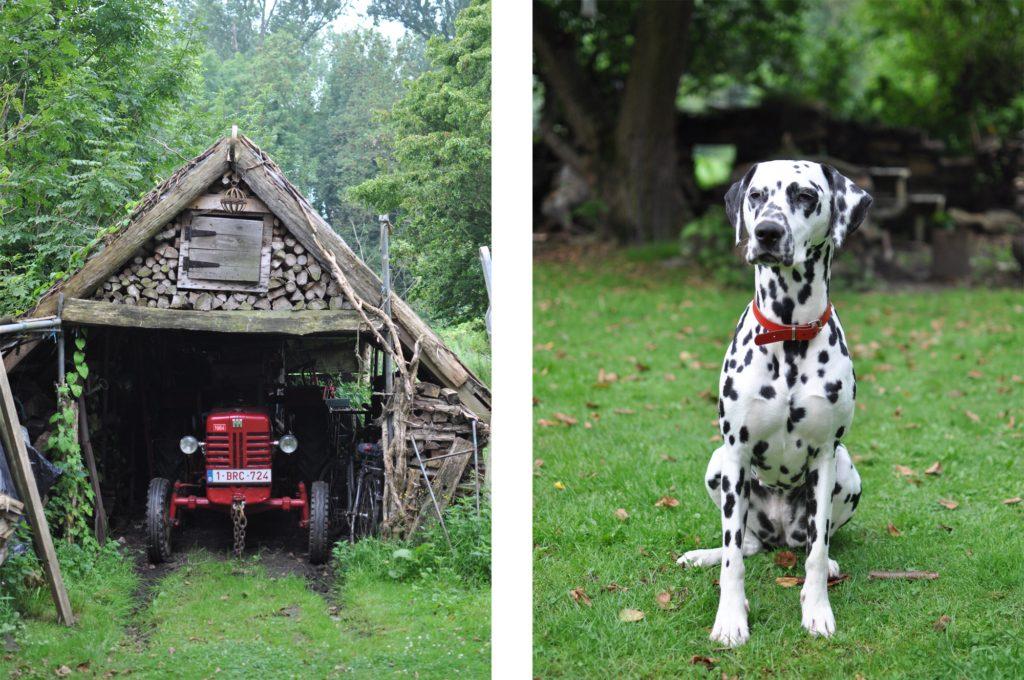 Belgien-Land-Reiseblog-Landleben-Idylle