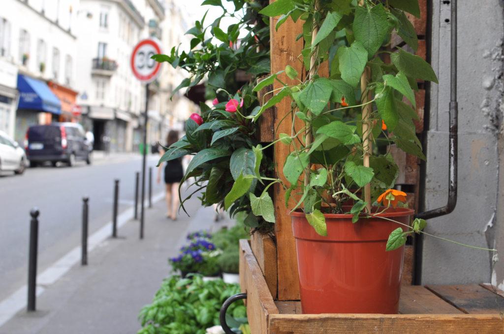 Paris Guide Marais Details Streetphotgraphy Marais