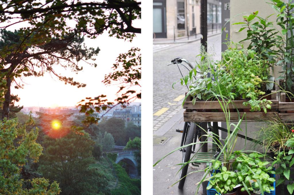 Paris Sonnenuntergang Park