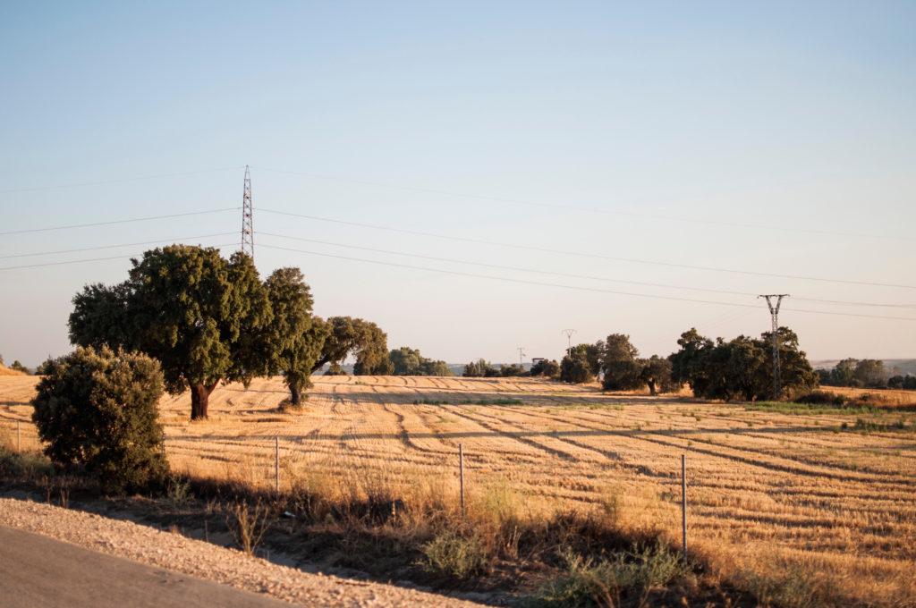 abendsonne-spanien-blablacar-autobahnromantik