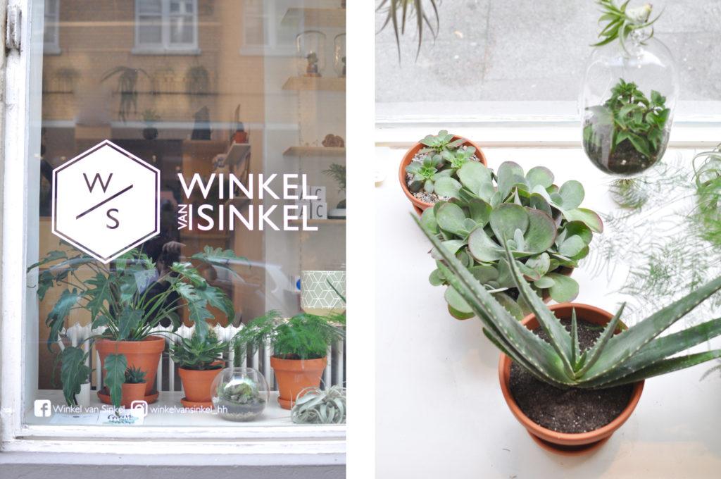 winkel-van-sinkel-hamburg-neustadt-urbanjungle-amsterdamer-lifestyle