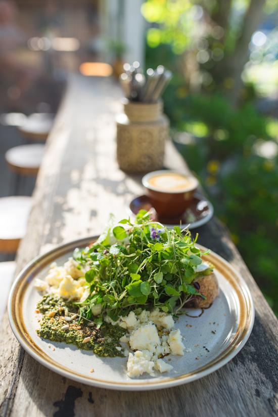Byron Bay Cafe Folk Breakfast Smash Avocado
