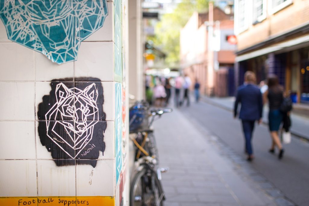 Street-Art-Melbourne-Wolf-Naomi