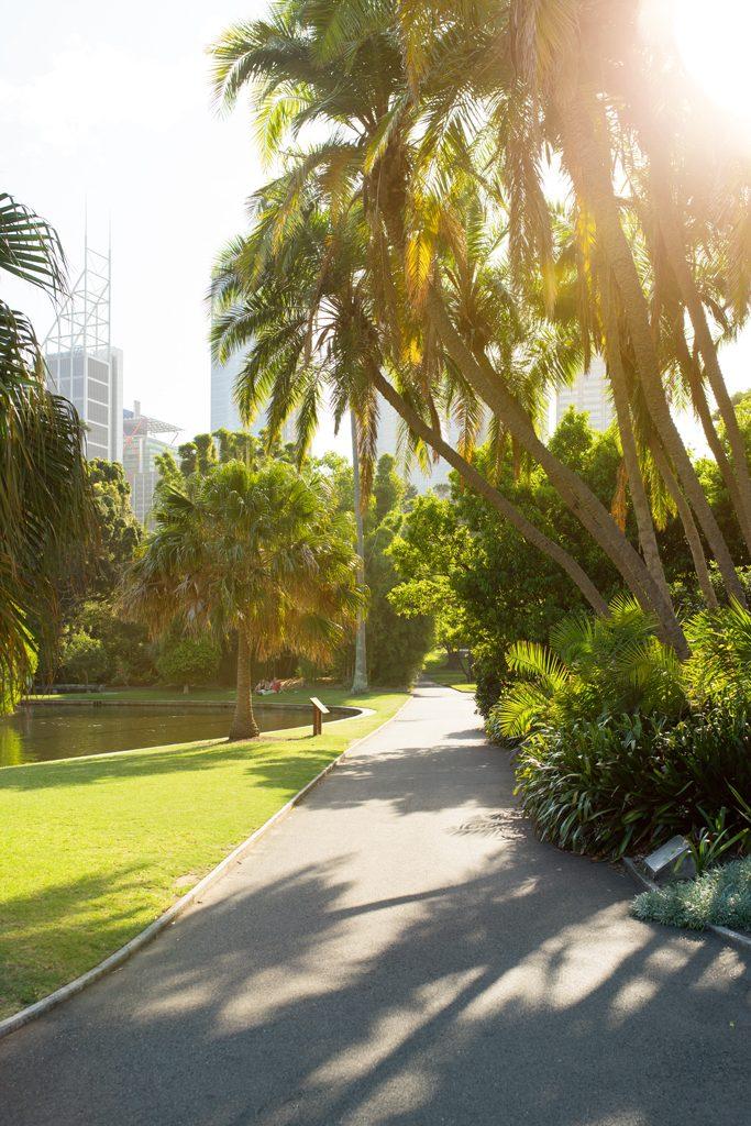 Sydney-Guide-Botanical-Garden