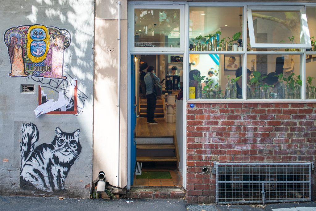 Little-Rogue-Blue-Plants-Melbourne-third-wave-coffee-Melbourne-Guide-Urbanjunglebloggers