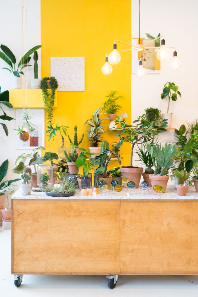 Plant København Kopenhagen Guide Tipps
